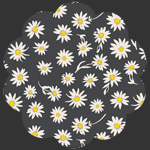 Flower Glory Evening in Knit