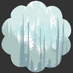 Evergreens Frozen in Canvas