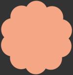 Apricot Crepe